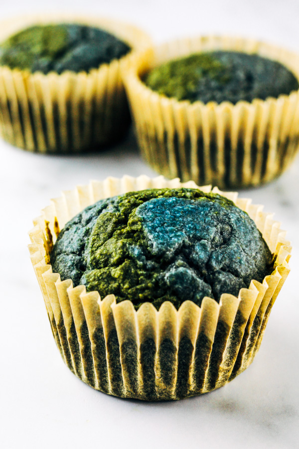 earth day vegan cupcakes