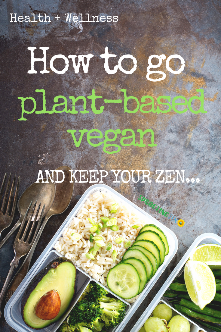 How To Go Vegan For Beginners - 9 tips that'll make transitioning easier. #vegan #plantbased #howtogovegan