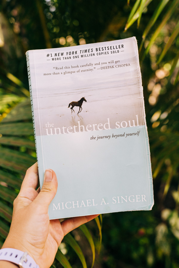 The book The Untethered Soul