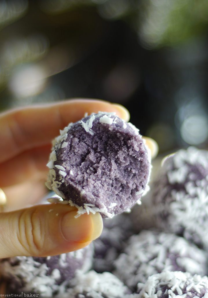 Blueberry-Coconut-Bliss-Balls-recipe