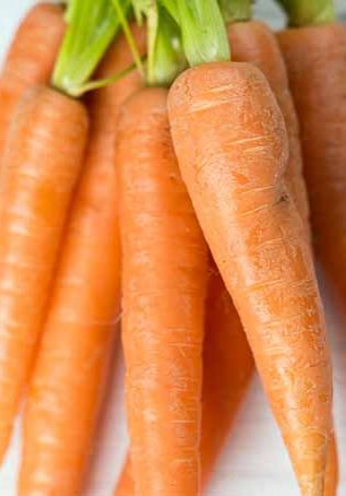 bunch-of-carrots